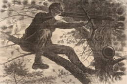 "Winslow Homer's ""The Army of the Potomac - A Sharpshooter on Picket Duty""  (Art Institute of Chicago)"